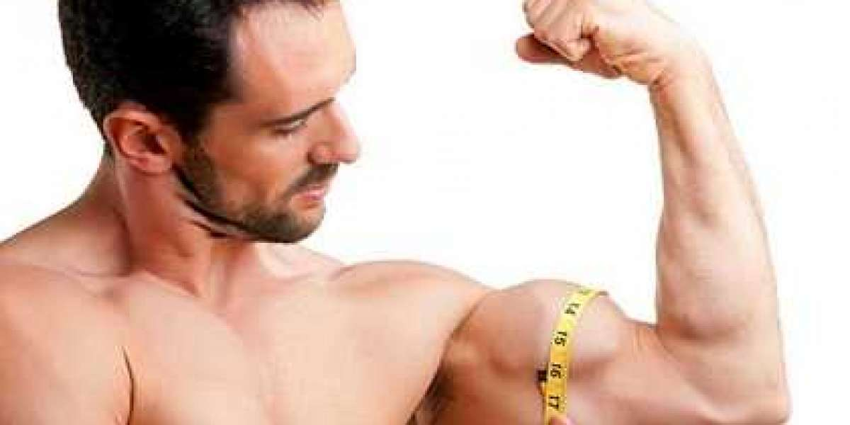 Exactly how to Build Lean muscle Steadily the Right Line of attack